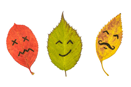Three colorful autumn leaves with face emotions. Black marker on the red, green and yellow leaves. Isolated on white background.