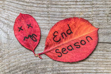 Red autumn leaf with sad face showing tongue and leaf with the inscription END SEASON. Black marker on the leaves on the old wooden background.
