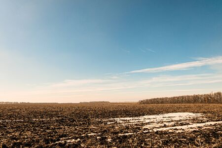 Early spring scene. Field with snowy thawed patches under a sunny blue sky.