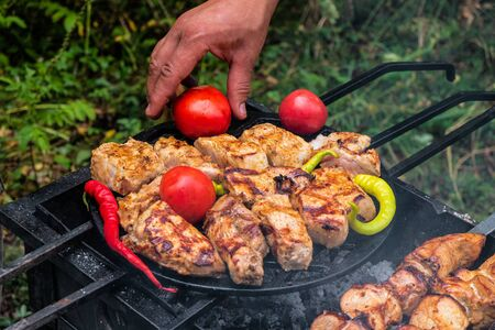 Meat skewered and vegetables on grill grate. Cooking hot tasty kebab, pepper and tomatoes vith smoke. Take tomato by hand. Foto de archivo