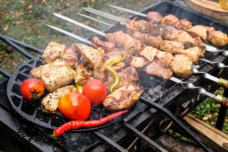 Meat skewered and vegetables grill. Cooking hot tasty kebab, pepper and tomatoes vith smoke.