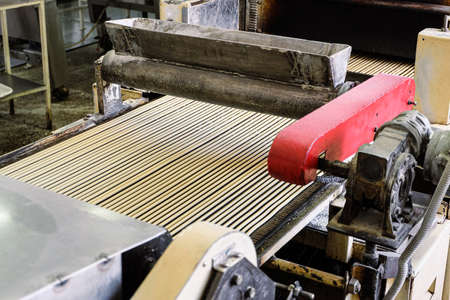 Raw dough for bread sticks on the production line of the bakery. Sprinkled salt on straws on a conveyor. Mechanized bakery industry.