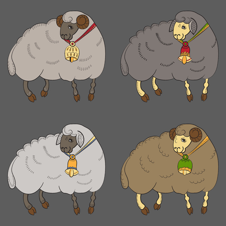 hoof: Collection with different sheep
