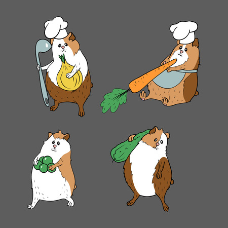 Collection with guinea pigs in brown colours and different vegetables