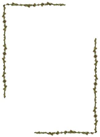 vine border: Green vine border