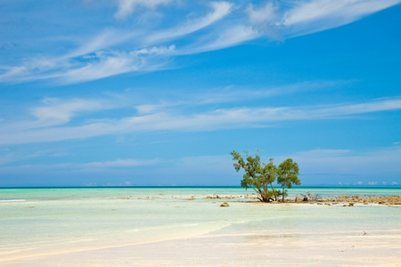 Pristine beach on Havelock Island, Andaman and Nicobar Islands, India. Stock Photo