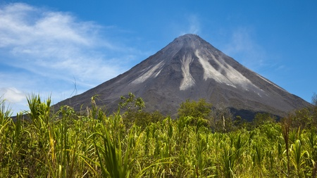 Tall green grass in stark contrast with the blackened slope of Arenal Volcano, Costa Rica.