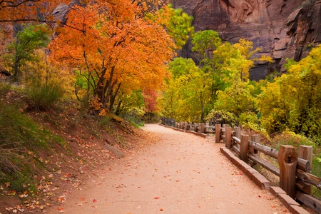The Riverside Trail leading to the Narrows in Zion Canyon National Park, Utah.