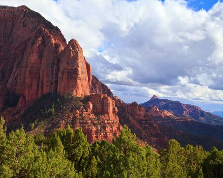 Timber Top Mountain, Shuntavi Butte, and Red Butte in the background at Kolob Canyons in Zion National Park, Utah.
