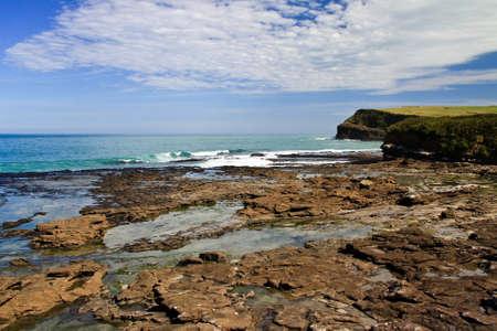 curio: Curio Bay in New Zealand