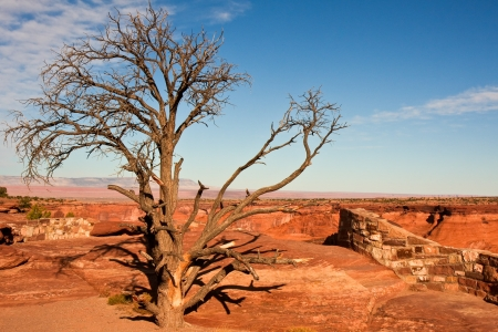 cliff edge: One of the vista points at Canyon de Chelly, Arizona. Stock Photo