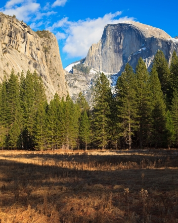 Beautiful Yosemite Valley with Half Dome in the distance  Standard-Bild