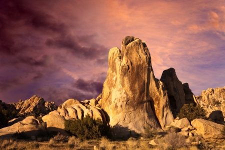 sonoran: Dramatic sunrise over the Mojave Desert in Joshua Tree National Park, California.