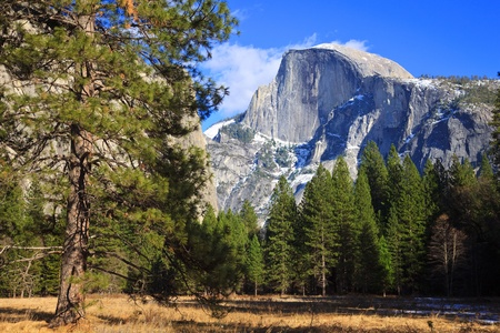 View of Half Dome from a meadow in Yosemite National Park, California.