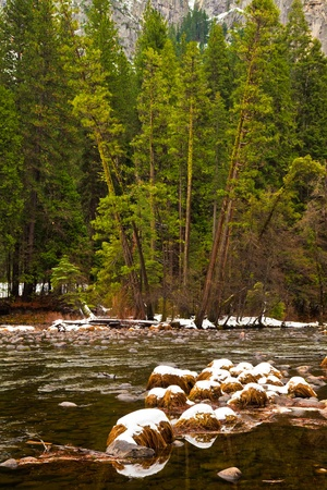 Rocks and dead grass in the Merced river at winter, Yosemite National Park. photo