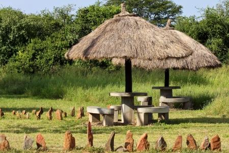 Shaded Stone Benches at Serengeti National Park, Tanzania.
