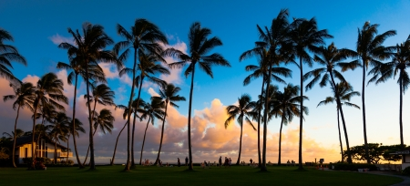 カウアイ島、ハワイ島での熱帯のビーチで美しい夕日。 写真素材
