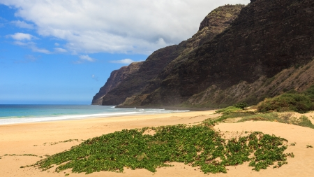 View of the Napali coast from Polihale beach in Kauai, Hawaii Islands. photo