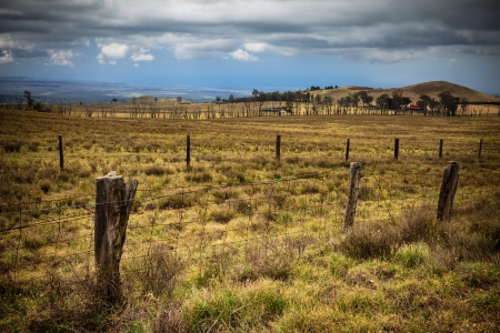 Rustic landscape on the Big Island of Hawaii. Stock Photo - 16273639