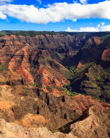 Amazing Waimea Canyon in Kauai, Hawaii Islands. photo