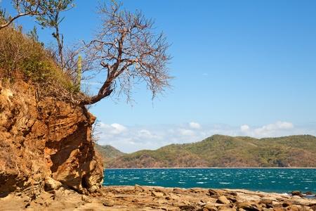 Summer landscape in the Guanacaste region of Costa Rica  photo