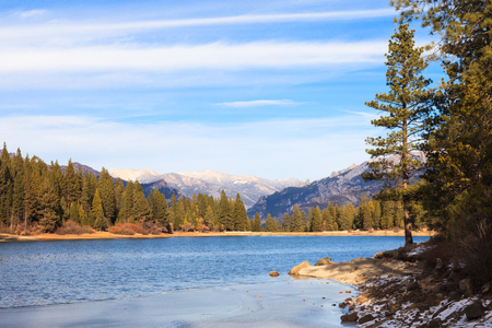 ponderosa pine winter: Lake Hume in early winter, Sequoia and Kings Canyon National Park, California