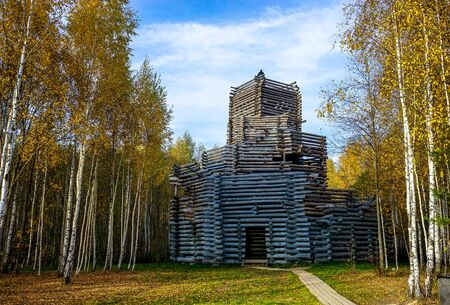 Wooden house on a background of autumn birch forest. Landscape, green housing.