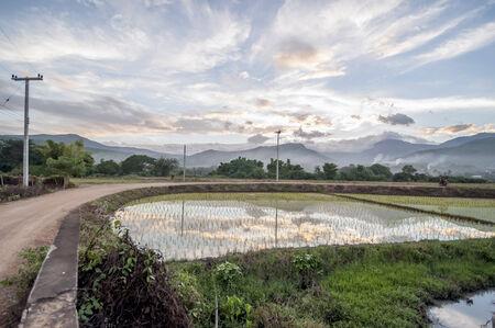 Natural beauty of Thailand photo