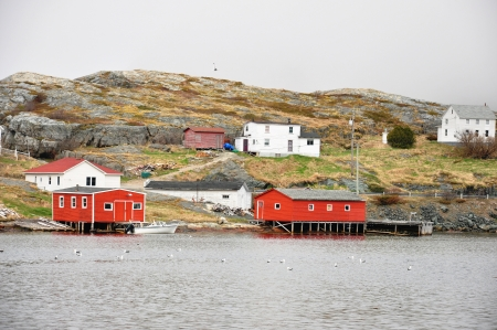 red fishing stages in the outport community of Salvage, Newfoundland