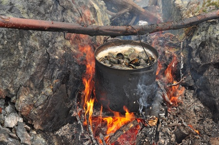 mussels cooking in pot over fire