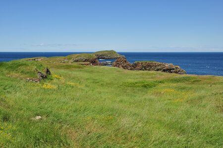 ocean view near Elliston, Newfoundland Stok Fotoğraf