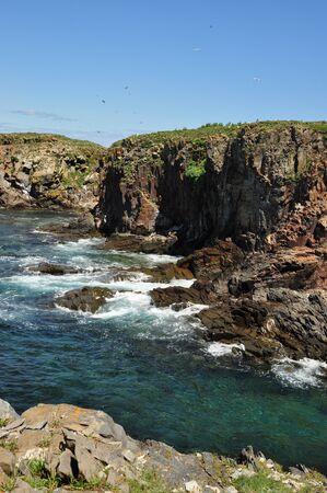 rocky cliffs near Elliston, Newfoundland