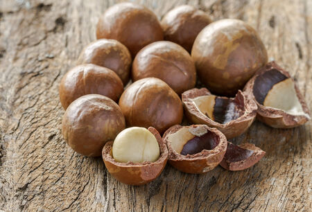 harvest organic: Group of macadamia in shell on wood