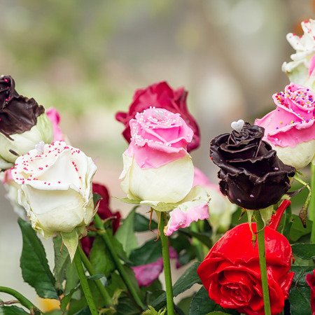 rose coloured: Bouquets of coating whit chocolate rose decorated in flower garden Stock Photo