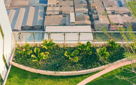 Top view of rooftop ornamental garden in urban setting