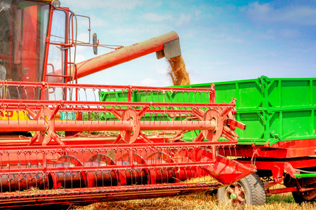 Red harvester in a field of wheat on blue cloudy sky photo