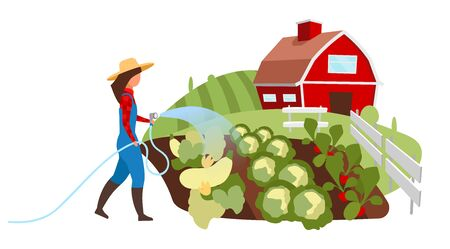 Vegetable farming flat illustration. Female farmer watering field, garden with hose cartoon character. Vegetable crop plants cultivation. Countryside farm, ranch works. Agricultural produce growing