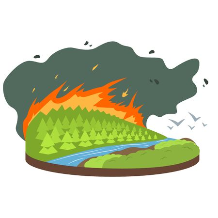 Wildfire cartoon vector illustration. Birds flying from burning forest, woods. Fire destroying woodland. Cataclysm. Extreme weather conditions. Flat color natural disaster isolated on white background. ZIP file contains: EPS, JPG. If you are interested in custom design or want to make some adjustments to purchase the product, don't hesitate to contact us! bsd@bsdartfactory.com Standard-Bild - 139088789