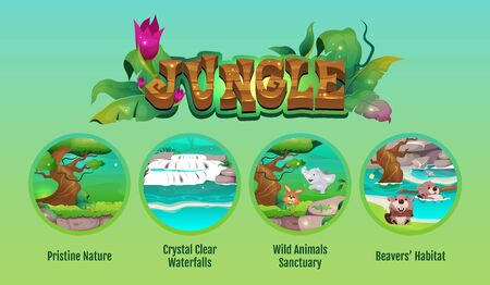 Jungle flat color vector conceptual infographic template. Tropical rainforest. Poster, booklet, PPT page concept design with cartoon characters. Advertising flyer, leaflet, info banner idea
