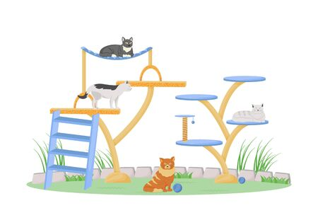 Cats on play tower flat color vector character. Cute kittens lie and jump. Domestic animal play on playground. Pet sitting isolated cartoon illustration for web graphic design and animation