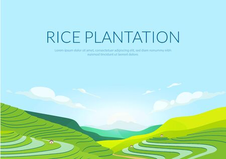 Terraced plantation poster flat vector template. Chinese rice fields. Tea plantations. Brochure, booklet one page concept design with illustration. Agricultural paddy slopes flyer, leaflet