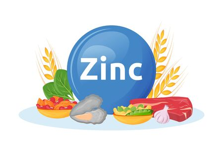 Products rich in zinc cartoon vector illustration. Minerals in seafood, beef. Garlic and nuts healthy foodstuffs flat color object. Diet for health isolated on white background Ilustrace