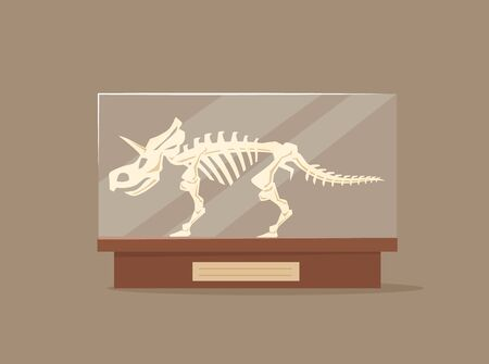 Triceratops in glass showcase cartoon vector illustration. Museum of paleontology exhibit. Dinosaur skeleton flat color object. Prehistoric predator bones on pedestal isolated on brown background