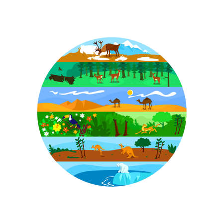 Biodiversity 2D vector web banner, poster. Worldwide wildlife. Global nature variety flat scenery on cartoon background. Terrestrial and marine ecosystem printable patch, colorful web element