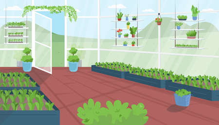 Greenhouse flat color vector illustration. Vegetable cultivation. Urban garden. Structure for horticulture. Plantation house. Agriculture facility 2D cartoon interior with landscape on background