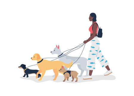 African american girl walking dogs on leashes flat color vector detailed character. Professional walker service. Pet care isolated cartoon illustration for web graphic design and animation Vettoriali