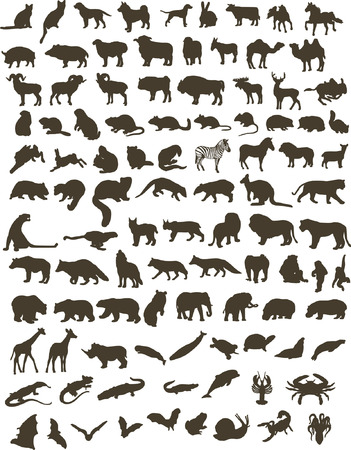 100 black silhouettes of different animals Vector