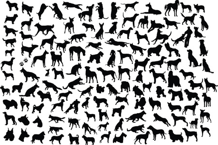 Lots of silhouettes of different breeds of dogs in action and static