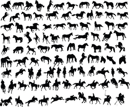 100 vector silhouettes of horses and riders Illustration