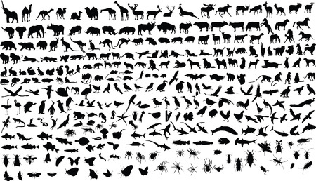 300 vector silhouettes of animals (mammals, birds, fish, insects) Ilustração